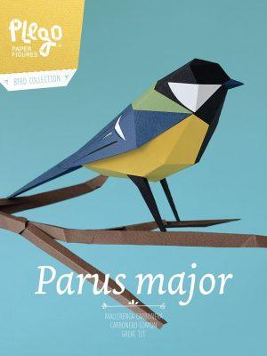 Parus Major