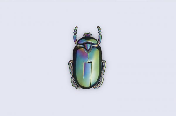 Sacacorchos Insectum