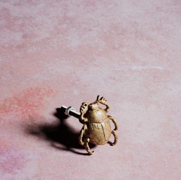 Tirador de cajón escarabajo