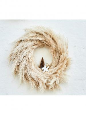 Corona de pampes naturals (Ø 35 cm)